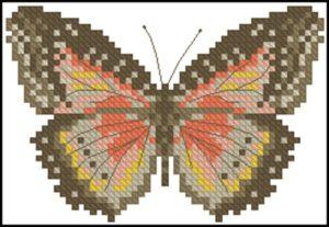 Motyl Brazowy
