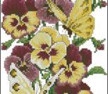 Picturesque pansies