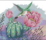 Колибри и цветок кактуса