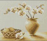 Грустный натюрморт с орхидеей