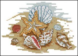 Морская звезда и ракушки