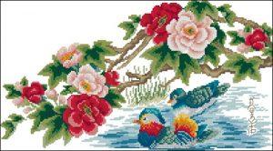 Мандариновые утки играющие в воде