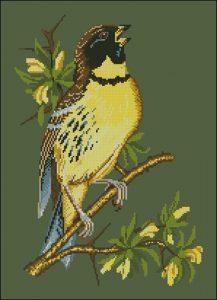Желтая птичка на ветке