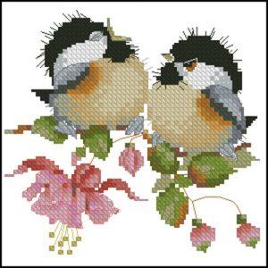 Fuchsia Chick-Chat