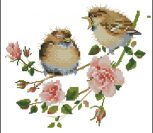 Rose Chick-Chat