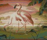 Flamingo in pereche