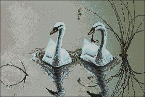 Лебеди плывут