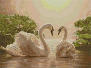 Прекрасные лебеди