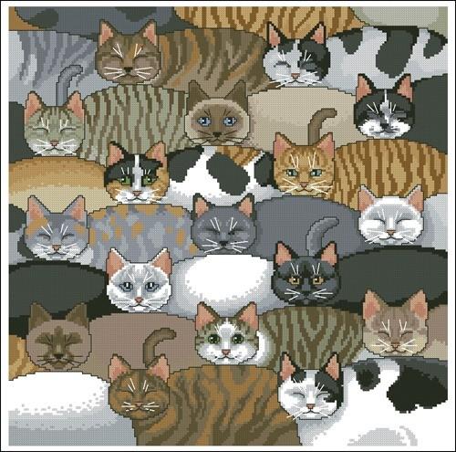 Kitty Kitty Pillow
