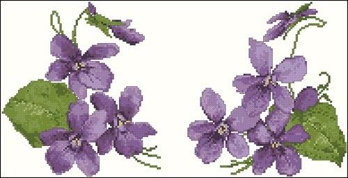 Helen's Violet