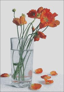 Poppies in a glass