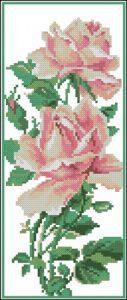 Chajnaja roza