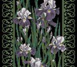 Filigree Irises