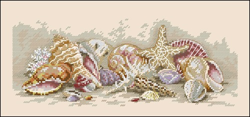 Seashell Treasures