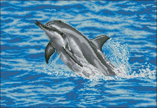 0148PH-01 Dolphin