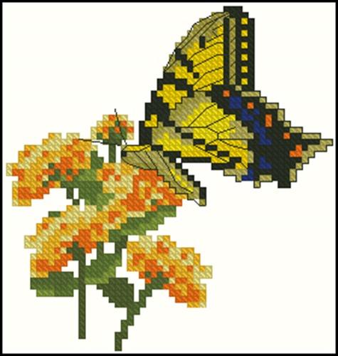 Tiger Swallowtail with Lantana