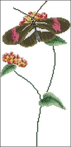 Vlinder bruin-rose
