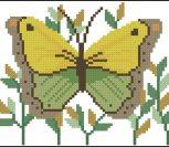 Butterfly Fantasy