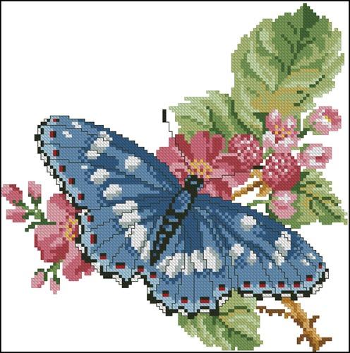 Бабочка и весенний цвет