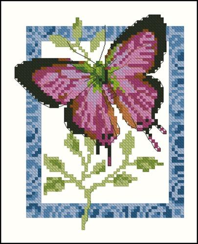 5-055 Butterfly 2