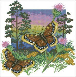 Бабочка Шоколадница