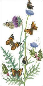 Бабочки и чертополох