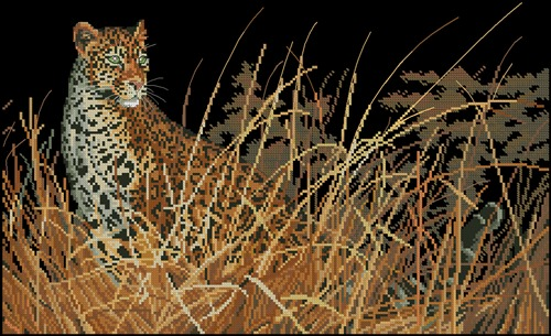 The Leopard Hunts All Alone # 03894