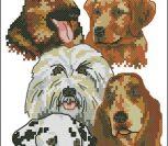 Собаки (коллаж)