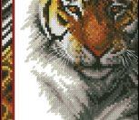 Wildlife Series Tiger