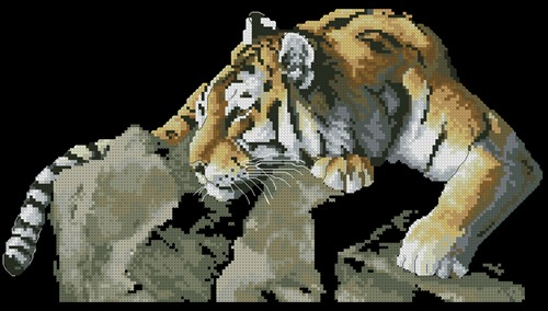 Tiger on the Rock