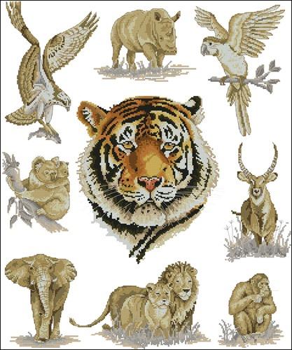 Tiger Sampler