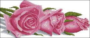 Розы в росе (розовые)