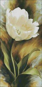 Игорь Левашов тюльпан