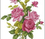 Pink Rose #OC-17-173