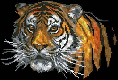 Tiger (#259)