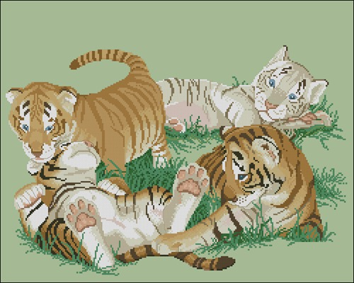 Tiny Tigers