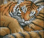 Спящий тигренок