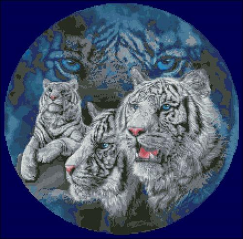 Белые тигры в круге