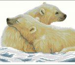 Polar Bear and His Cub Counted